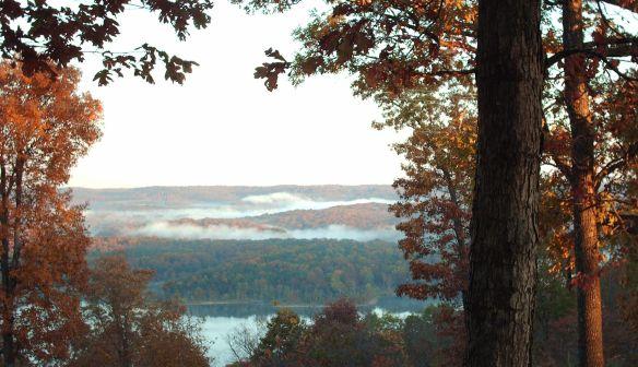 Nov Fog