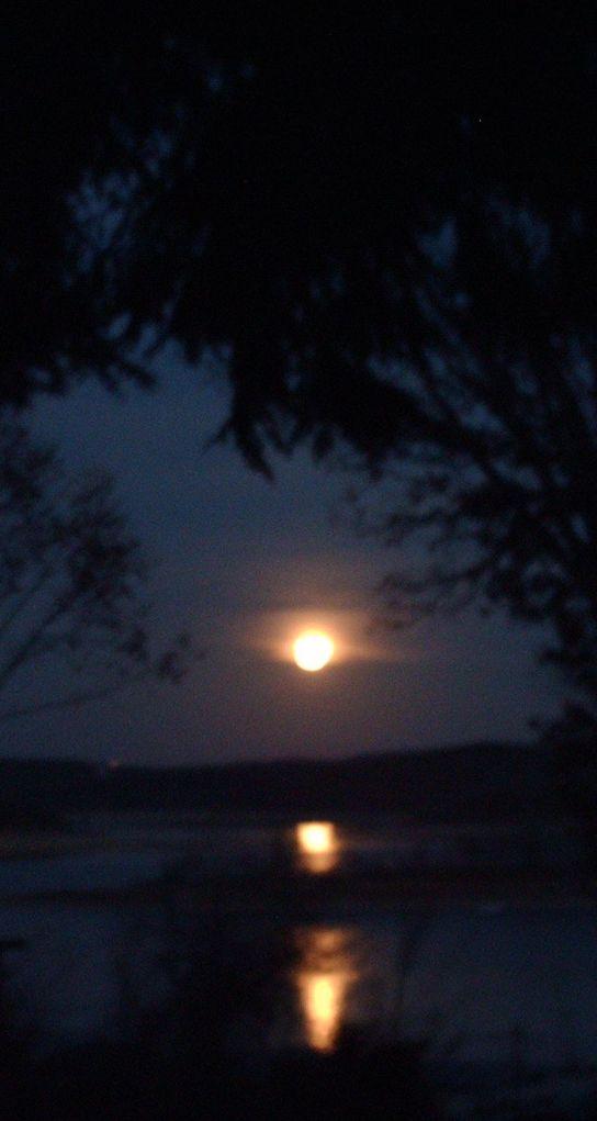 nov moon 4