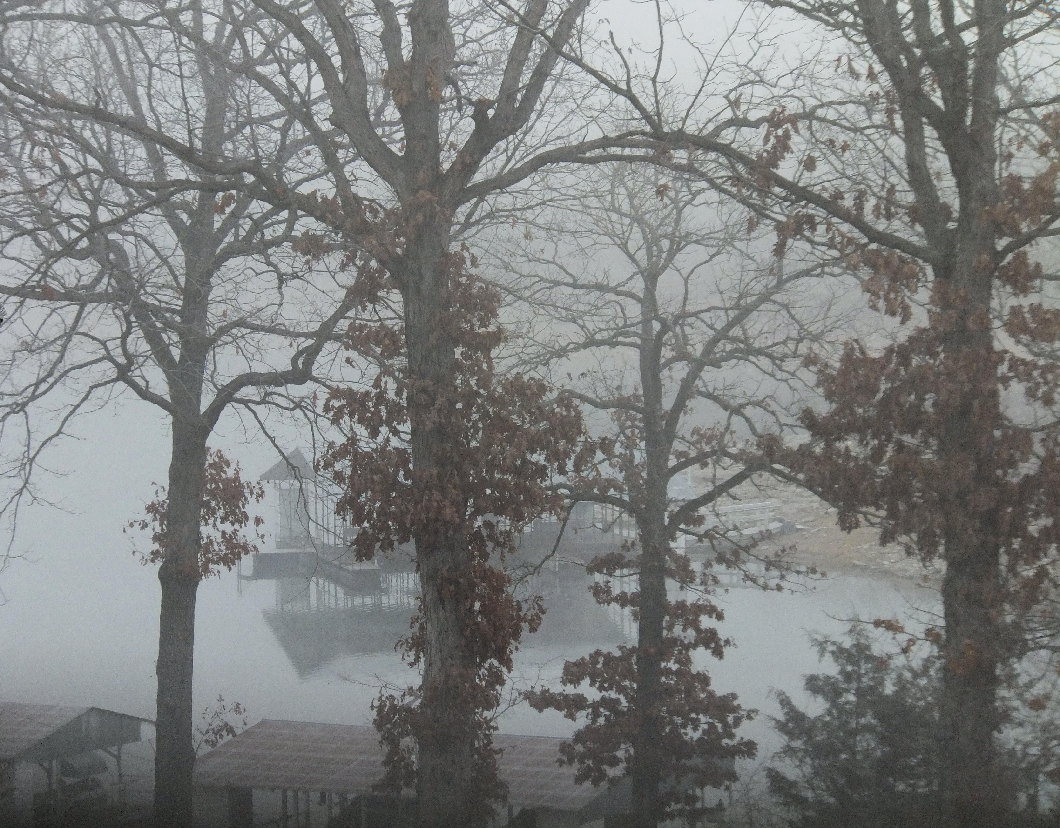 Foggy Friday morning in January
