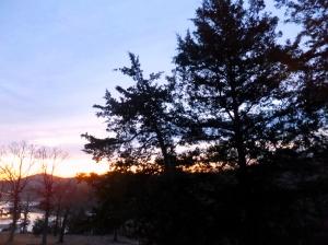 January dawn