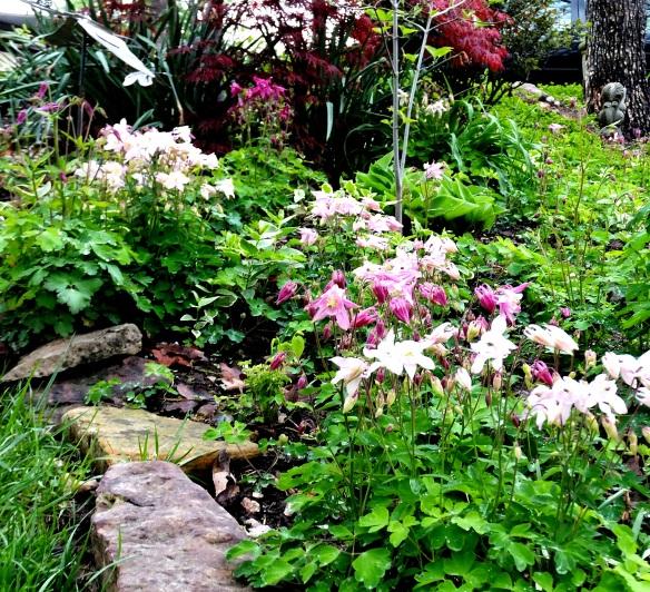 April Garden 2 2013