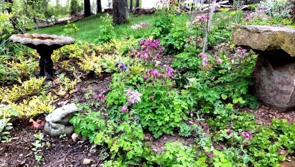 April garden 2013