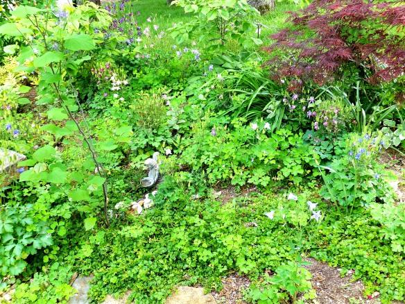 May Garden 2 2013
