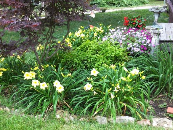 June Garden 2013