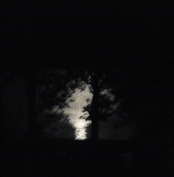 october moon light on the water