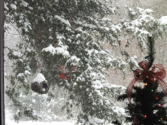 Dec snow 2013