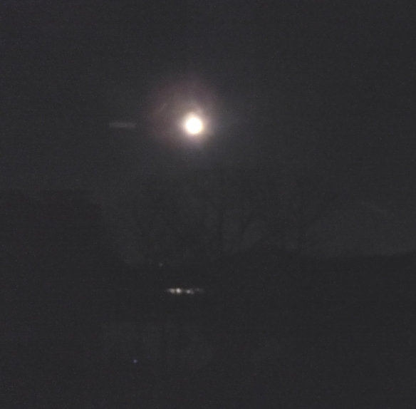Night of the Cold Moon