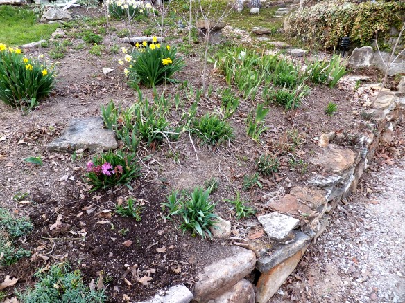 garden all tidy and ready for spring