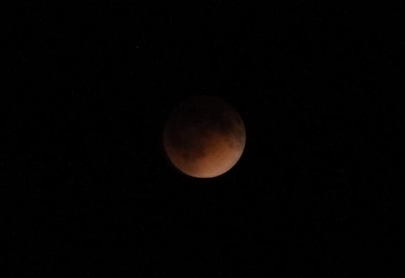 April Moon 2014