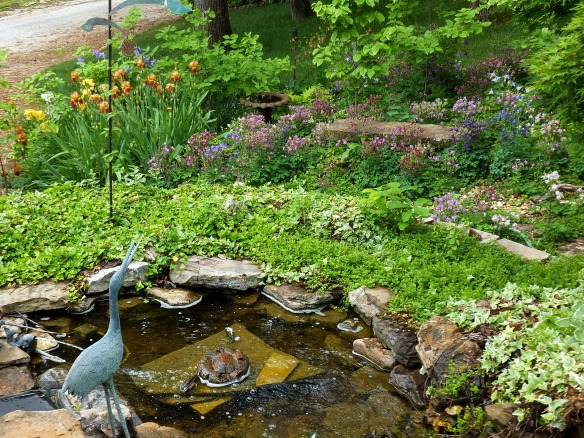 Herons garden in May 2014