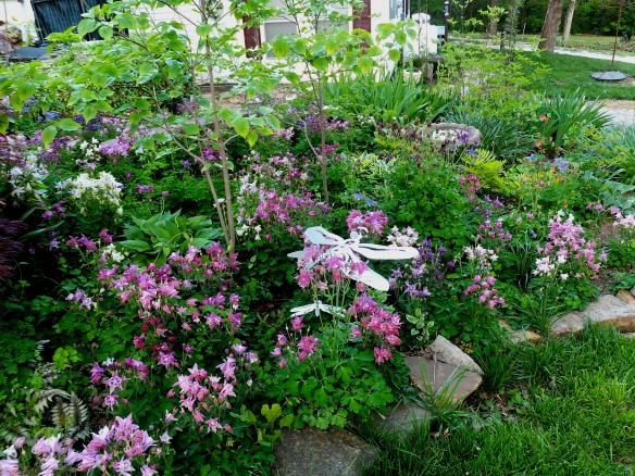 May Garden 4 2014