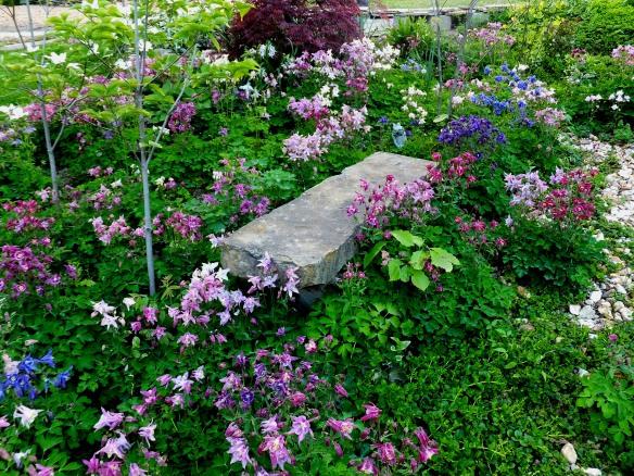 May Garden 5 2014