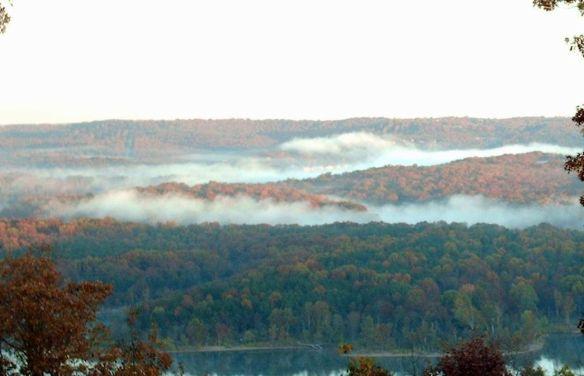 Nov fog 2