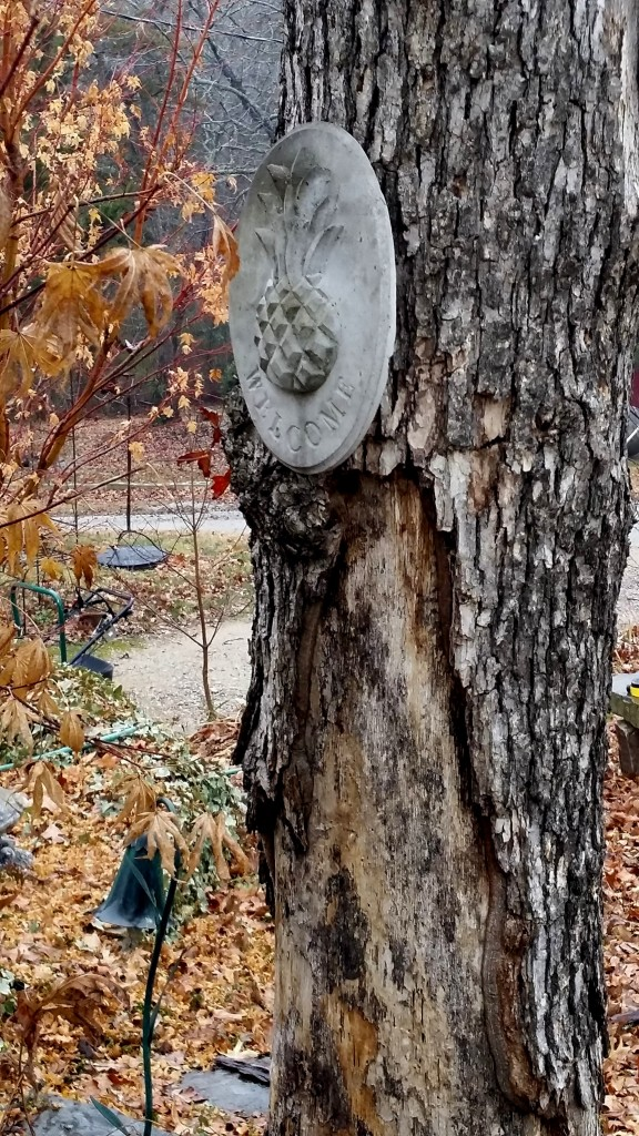 old red oak 2015