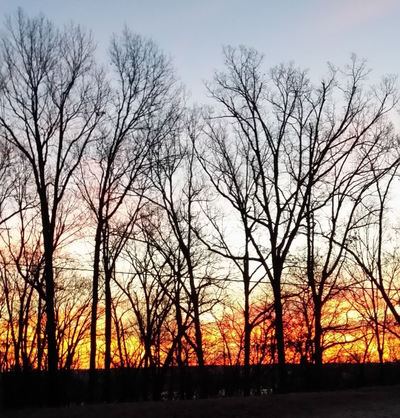 winters sunset 2 2015