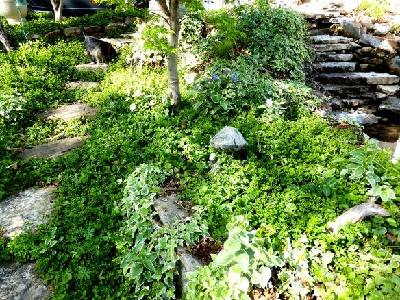 April garden 2 2015