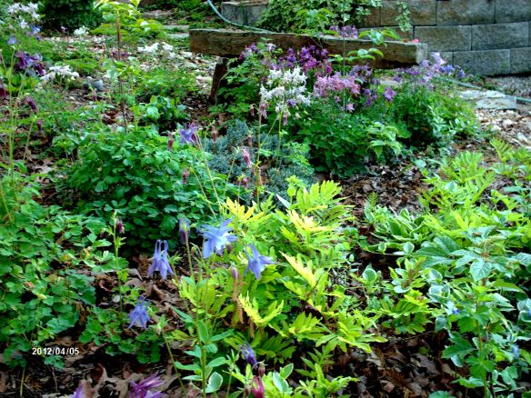 April Garden 4